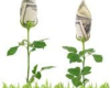 Presentase Bunga Bank Bunga Bank Angsuran Pajak