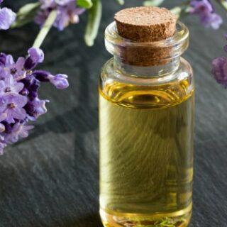 gambar 1 - Kegunaan Minyak Atsiri Lavender